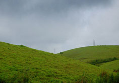 Vagamon Holiday Package